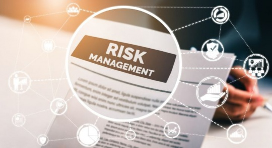 Strategies for Risk Management in Cloud Computing
